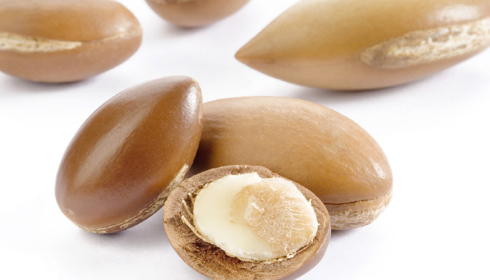 Image of argan nuts, one open showing wher argan oil comes from